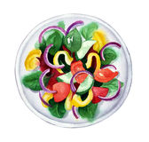 Ensalada de las verduras frescas, ejemplo de la acuarela stock de ilustración