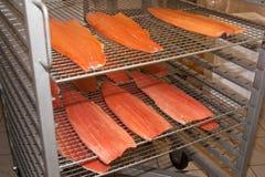 Ensalada de los pescados - salmones y verduras asados a la parrilla fotos de archivo libres de regalías