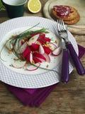 Ensalada de los rábanos de la primavera Imagen de archivo
