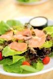 Ensalada de los salmones de la frescura Imagen de archivo