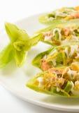 Ensalada de los salmones y del aguacate en hojas de la achicoria Foto de archivo libre de regalías