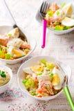 Ensalada de los salmones y del arroz Fotografía de archivo libre de regalías
