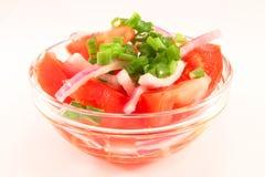Ensalada de los tomates y de las cebollas Fotografía de archivo libre de regalías