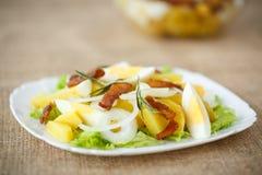 Ensalada de patata con tocino y huevos Fotografía de archivo libre de regalías