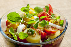 Ensalada de patata francesa foto de archivo