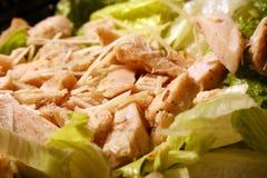 Ensalada de pollo Foto de archivo libre de regalías