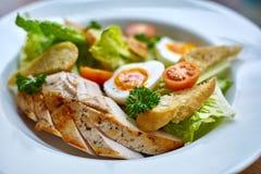 Ensalada de pollo con los tomates de las verduras de hoja, del cardo, de los huevos, del bulgur y de cereza Fotos de archivo libres de regalías