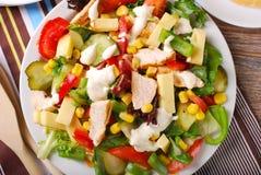 Ensalada de pollo con queso y verduras Fotos de archivo libres de regalías