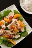 ensalada de pollo del Asiático-estilo con el tazón de fuente de arroz Fotos de archivo libres de regalías
