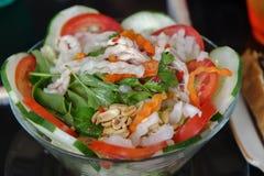 Ensalada de pollo vietnamita Imágenes de archivo libres de regalías