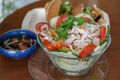 Ensalada de pollo vietnamita Imagen de archivo
