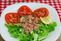 Ensalada de Tuna Fish Meat Over Green Foto de archivo