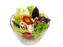 Ensalada de verduras frescas Imagen de archivo libre de regalías