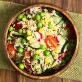 Ensalada del arroz moreno y de la verdura Imágenes de archivo libres de regalías