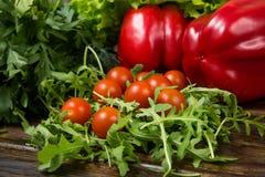 Ensalada del Arugula con los tomates Imagen de archivo libre de regalías