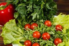 Ensalada del Arugula con los tomates Fotografía de archivo libre de regalías