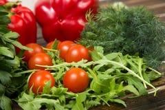 Ensalada del Arugula con los tomates Foto de archivo libre de regalías