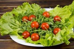 Ensalada del Arugula con los tomates Imagenes de archivo