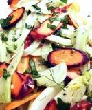Ensalada del hinojo y de la zanahoria Fotografía de archivo