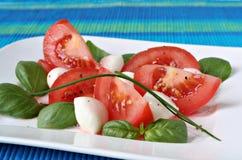 Ensalada del tomate Fotos de archivo libres de regalías