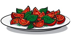 Ensalada del tomate con albahaca Imagen de archivo libre de regalías