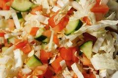 Ensalada del verano con el pepino, el tomate y la cebolla Imagen de archivo libre de regalías