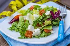 Ensalada dietética con los tomates y el queso feta Fotografía de archivo