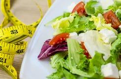 Ensalada dietética con los tomates y el queso feta Imágenes de archivo libres de regalías