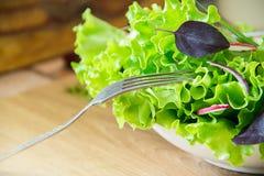 Ensalada en la tabla con el rábano, la lechuga, la cebolla roja y las hojas de la albahaca Dieta o concepto de la comida del vege Fotos de archivo