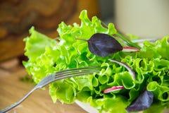 Ensalada en la tabla con el rábano, la lechuga, la cebolla roja y las hojas de la albahaca Dieta o concepto de la comida del vege Fotos de archivo libres de regalías