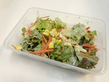 Ensalada fresca con las frutas, el tomate, la zanahoria, el maíz, y la verdura verde Alimento sano Imágenes de archivo libres de regalías