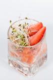 Ensalada fresca con los camarones, salmones, aguacate y Foto de archivo libre de regalías