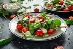 Ensalada fresca de Cherry Tomato, de la mozzarella con la mezcla verde de la lechuga y la cebolla roja servido en la placa Alimen Imagen de archivo