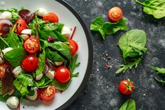 Ensalada fresca de Cherry Tomato, de la mozzarella con la mezcla verde de la lechuga y la cebolla roja servido en la placa Alimen Imagen de archivo libre de regalías