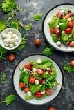 Ensalada fresca de Cherry Tomato, de la mozzarella con la mezcla verde de la lechuga y la cebolla roja servido en la placa Alimen fotografía de archivo libre de regalías