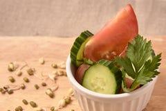 Ensalada fresca Tomates y pepinos habas brotadas Fondo neutral Fotos de archivo