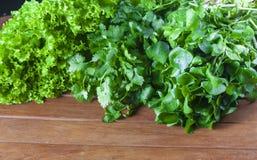 Ensalada fresca verde Fotos de archivo