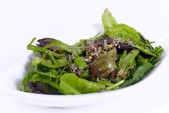 Ensalada griega verde fresca, vegetariano Fotos de archivo libres de regalías