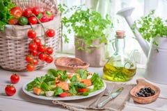 Ensalada hecha en casa con los salmones y las verduras Foto de archivo libre de regalías