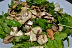 Ensalada italiana deliciosa de la espinaca Foto de archivo