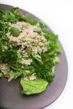 Ensalada mezclada de la quinoa Imagen de archivo libre de regalías