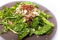 Ensalada mezclada de la quinoa Foto de archivo libre de regalías