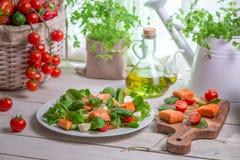 Ensalada sana con las verduras frescas y los salmones Imagenes de archivo
