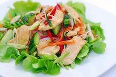 Ensalada sana del pollo picante tailandés Imagen de archivo libre de regalías