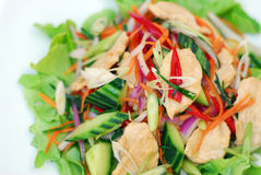 Ensalada sana del pollo picante tailandés Imágenes de archivo libres de regalías