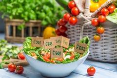 Ensalada sana hecha de verduras sin los preservativos Imágenes de archivo libres de regalías