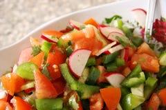 Ensalada vegetal. Foto de archivo libre de regalías