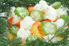 Ensalada vegetal Fotos de archivo libres de regalías
