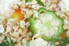 Ensalada vegetal Foto de archivo libre de regalías