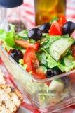 Ensalada vegetal con aceite de oliva foto de archivo libre de regalías